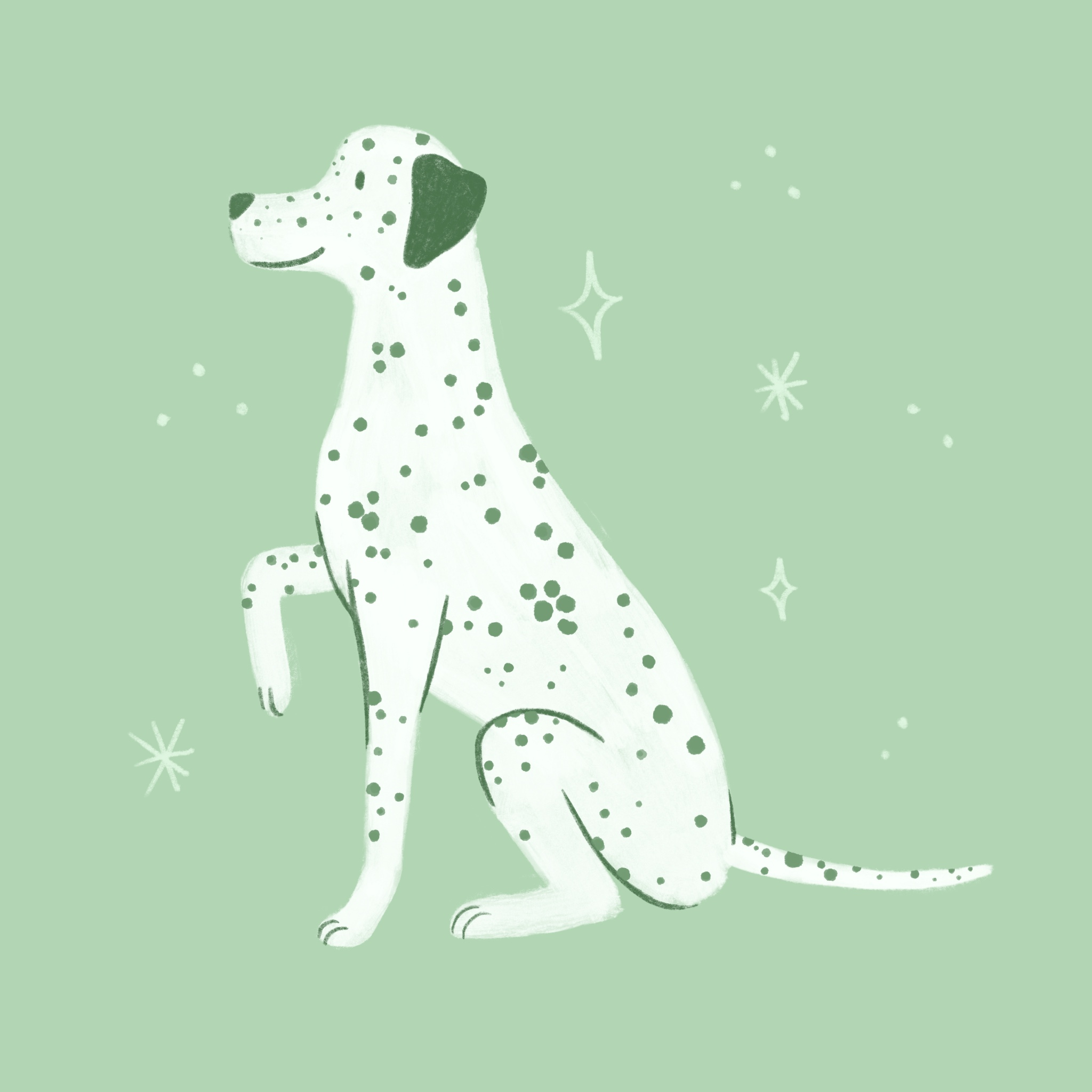 An illustration of a Dalmatian dog