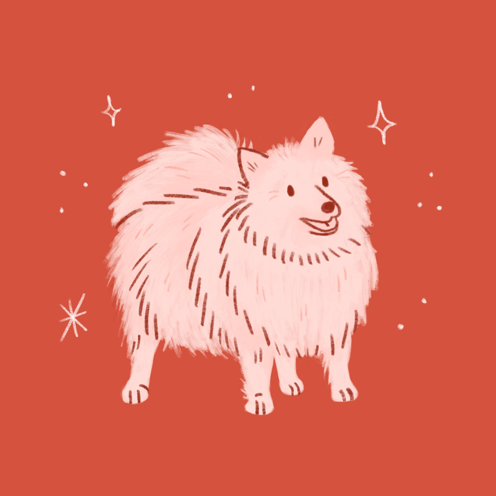 An illustration of a Keeshond dog