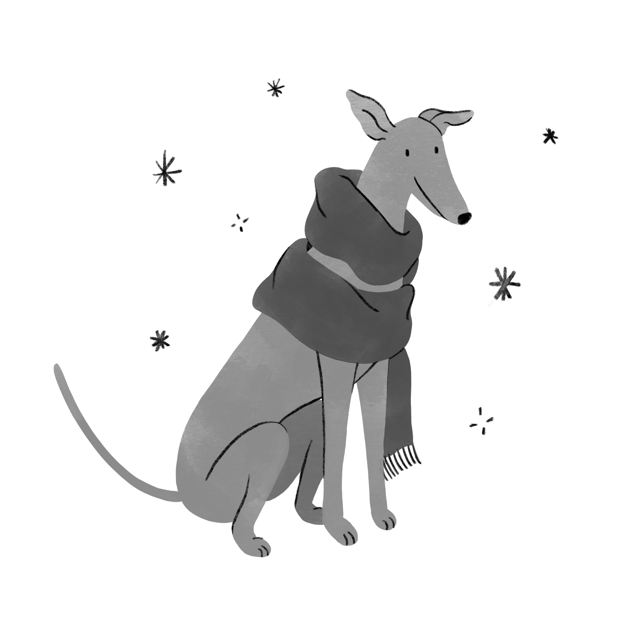 An illustrated greyhound wearing a big winter scarf