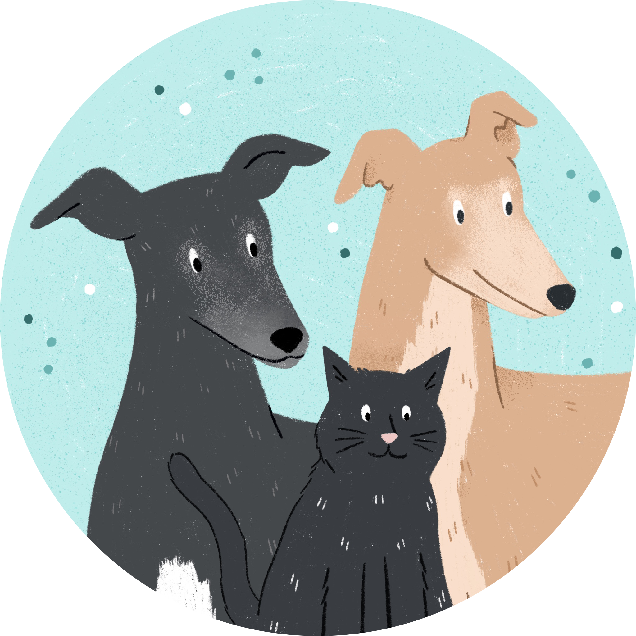 A pet portrait of two greyhounds and a black cat