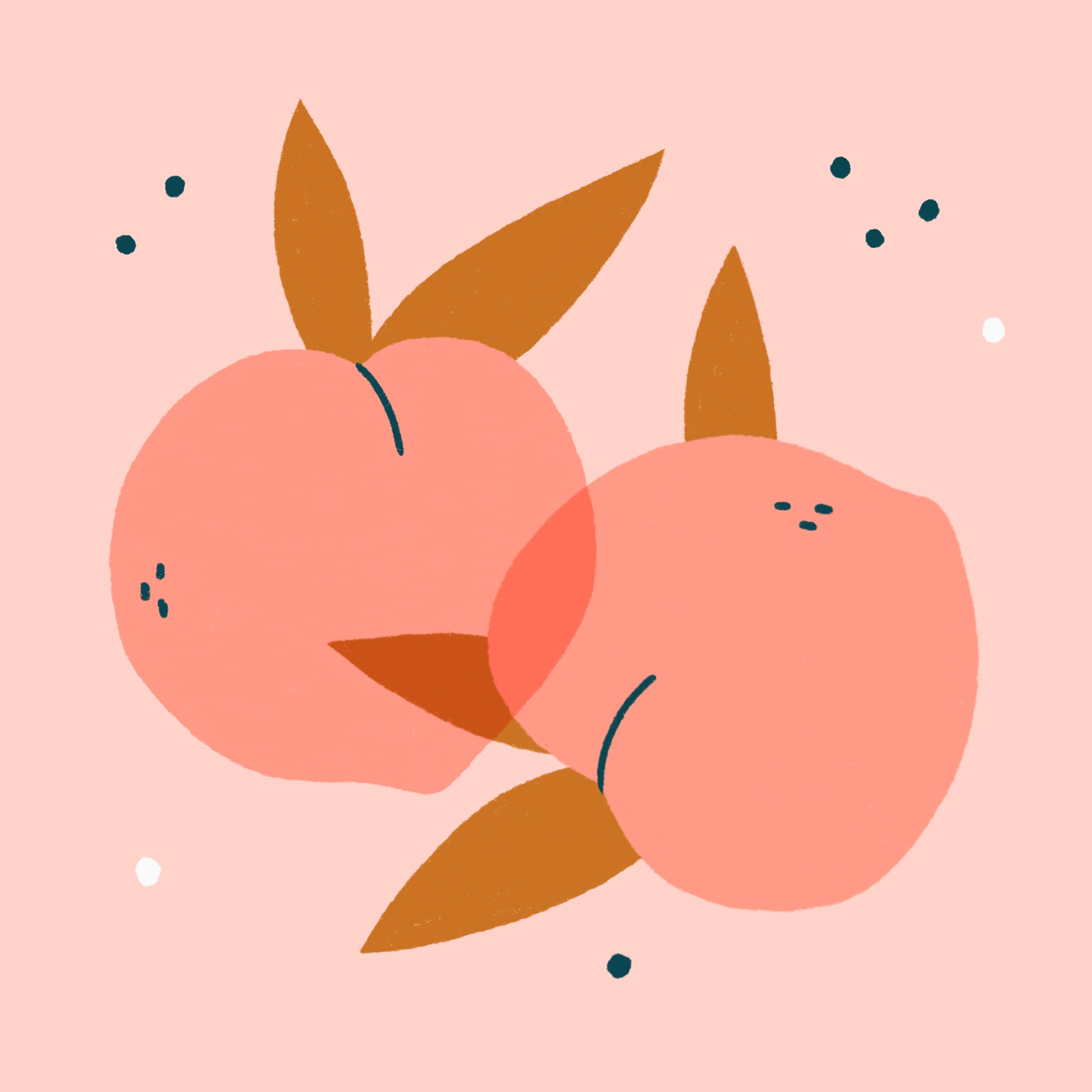 An illustration of two peaches